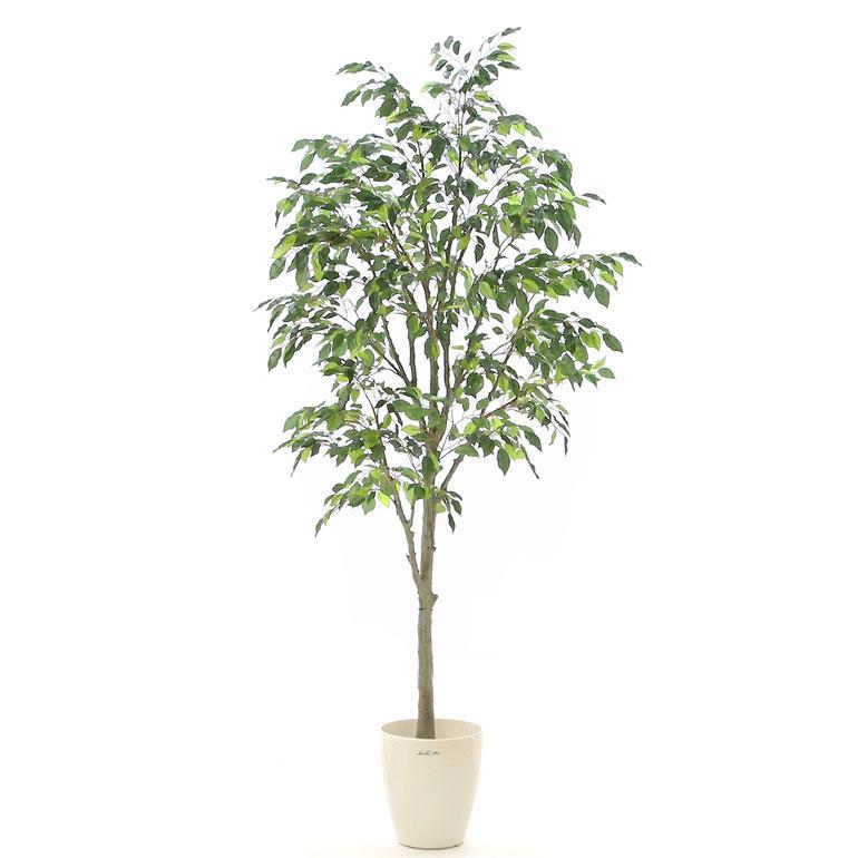 光触媒人工観葉樹