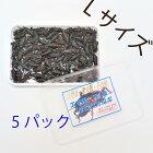 冷凍黒コオロギMサイズ(約2.0cm/100匹)1パック冷凍餌コオロギ国産ペット用品黒コオロギ蟋蟀小動物、爬虫類、大型熱帯魚用3パック