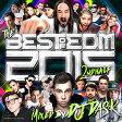 CD  THE BEST OF EDM 2015 2nd Half (2枚組) - DJ DASK