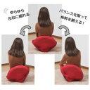 シェイプアップ座椅子 BL・ブルー 1042690