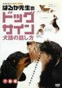 はるか先生のドッグサイン ~犬語の話し方~ VOL.2 行動編/DVD/MNPS-47画像