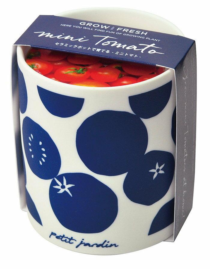 観葉植物 ガーデニング グロー&フレッシュ ミニトマトの写真