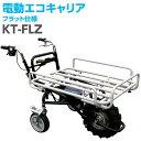 和コーポレーション 個人宅 電動エコキャリア21 3輪 フラットタイプ ラグタイヤ KT-FLZ A130528