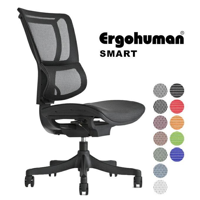 エルゴヒューマン エンジョイ ローバック Ergohuman ENJOY EJ-HAMハイブリット 新型 オフィスチェアー OAチェアー デスクチェアーの写真