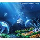 花の唄/ONE/六等星の夜 Magic Blue ver.(期間生産限定盤)/CDシングル(12cm)/SECL-2212画像
