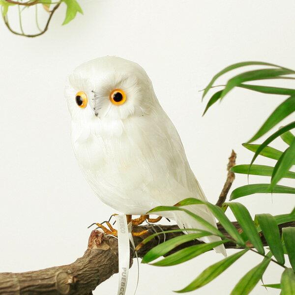 """アーティフィシャル・バード """"White Owl"""" - S/Aの写真"""