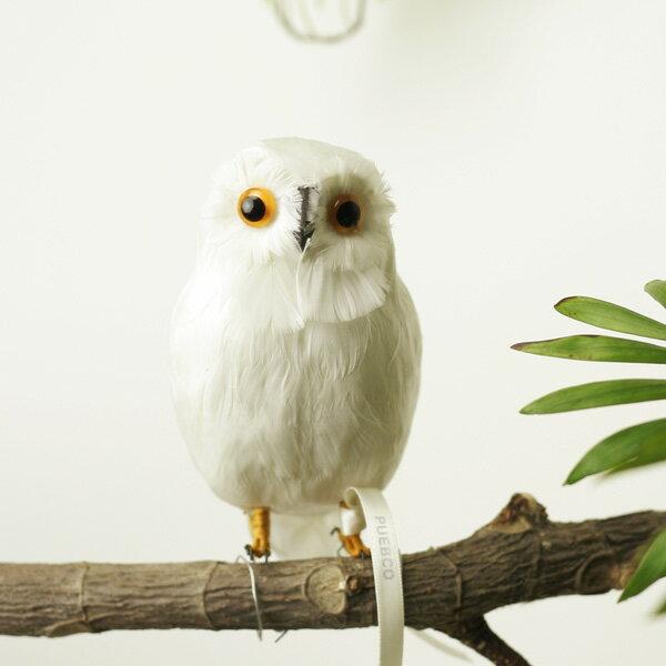 """アーティフィシャル・バード """"White Owl"""" - S/B"""