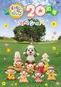 NHKDVD いないいないばあっ! 20周年スペシャル/DVD/COBC-6915