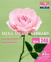 MIXA IMAGE LIBRARY Vol.246 シンプル/フラワー1