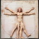 figma テーブル美術館 ウィトルウィウス的人体図 フリーイング