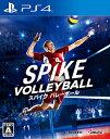スパイク バレーボール/PS4/ オーイズミ・アミュージオ PLJM16343