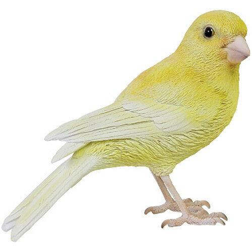 リアル 鳥 オブジェ BIRDIE BILL インコ オウム カナリア ラブバード