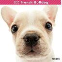 2017年度版 THE DOG カレンダー フレンチ・ブルドッグ