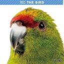 アーリスト 2017年 THE BIRD カレンダー 1個