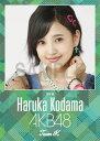 (卓上) 兒玉遥 2016 AKB48 カレンダー(生写真(2種類のうち1種をランダム封入))