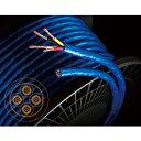 6NSP-GS5500A-キリウリ ゾノトーン 切り売り/1m単位 スピーカーケーブル グランスター ZONOTONE 6NSP-Granster 5500α 6NSPGS5500Aキリウリ