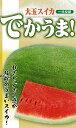 フタバ種苗 一代交配 西瓜 でかうま! スイカ 種・小袋詰 フタバ種苗卸部