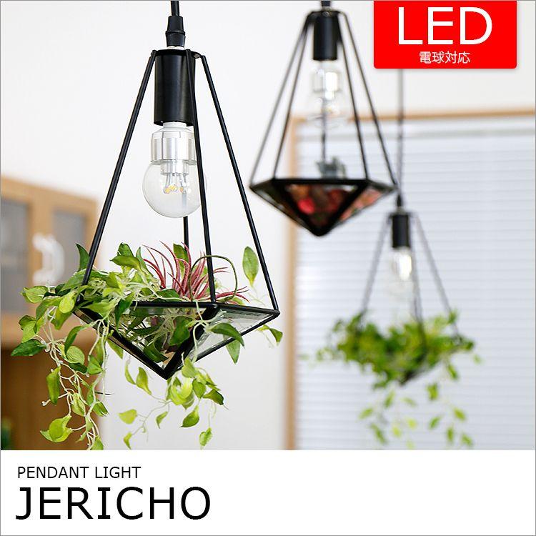 テラリウムのようなペンダントライト 1灯 ジェリコ BBP-078の写真