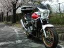 CB1000SF 汎用ビキニカウル DS-01 typeエアロ スモークスクリーン パールフェイドレスホワイト単色塗装 NH-341P