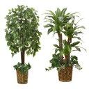 インテリアグリーン/人工観葉植物 ベンジャミン&幸福の木 光触媒加工 幹:天然木使用 ファミリー・ライフ