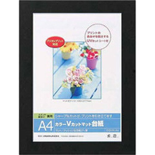ナカバヤシ カラーVカットマット台紙 A4サイズ ブラック DGVM-A4-D(1コ入)