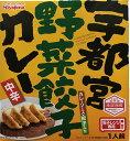 宮島醤油 宇都宮野菜餃子カレー 184g