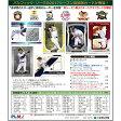 EPOCH 2017 パシフィックリーグ ベースボールカード プレミアエディション高級版ボックス00-63050