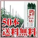セキスイ イボ竹 20×1800 (25本入)