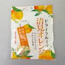JA紀南 ドライフルーツ清見オレンジ 35g 紀南農業協同組合