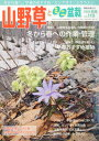 山野草とミニ盆栽 2017年 01月号 雑誌 /近代出版 近代出版