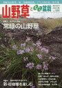 山野草とミニ盆栽 2017年 11月号 雑誌 /近代出版 近代出版