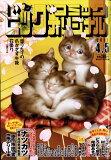 ビッグコミック オリジナル 2017年 4/5号 雑誌 /小学館