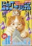 ビッグコミック オリジナル 2017年 5/5号 雑誌 /小学館