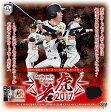 BBM 阪神タイガース ベースボールカードセット Authentic Edition 若虎