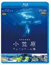 ビコム Relaxes BD 世界自然遺産 小笠原 ~ボニンブルーの海~/Blu-ray Disc/ VB-5513