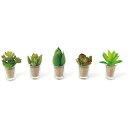 Kishima  消臭アーティフィシャルグリーン リトルサキュレントファミリー KH-60989