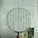 木柄ルーペ75mm拡大鏡 (手持ちルーペ 虫眼鏡 虫めがね 天眼鏡)