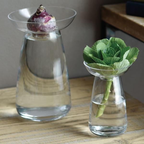 aqua culture vase s アクアカルチャー ベース sの写真