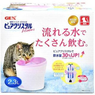 猫が水を飲まない理由と対処法。水を飲むようになった3つの方法