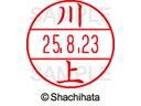 シャチハタ データネームEX 15号 マスター部 印面 川上 XGL-15M画像