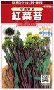 【中国野菜】紅菜苔(こうさいたい)【サカタのタネ】野菜種(8ml)