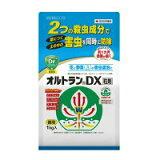 オルトランDX粒剤 1〓