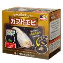 日本動物薬品 飼育観察セット カブトエビ
