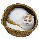 キャティーマン アジアンベッド スタンダード ハーフドーム 猫用画像