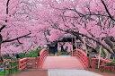 ジグソーパズル 天下一の桜 高遠城址-長野 1000ピース 10-805 エポック エポック社