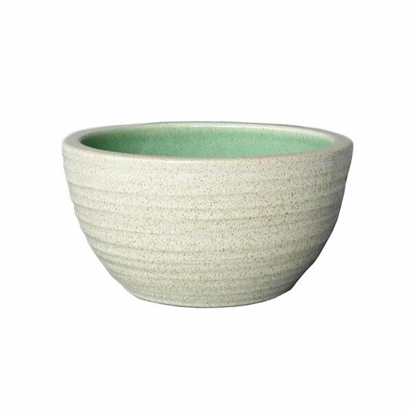 10号 白カスミ 水鉢 信楽焼 すいれん鉢