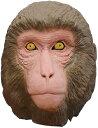 M4 おさるさん ラバーマスク サルのマスク 猿 申画像