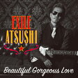 Beautiful Gorgeous Love/First Liners(DVD付)/CDシングル(12cm)/RZCD-86148