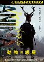 アノニマス・アニマルズ 動物の惑星/DVD/ アミューズメントメディア総合学院 ADL-3009S