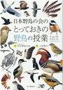 とっておきの野鳥の授業 山と渓谷社 9784635063098